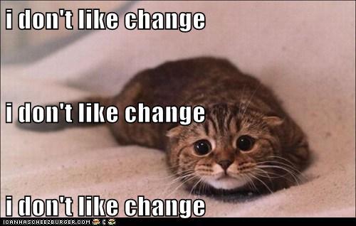 change cat